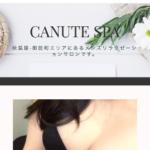 【メンズエステ 閉店】秋葉原・御徒町 Canute SPA(クヌート・スパ)